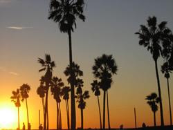 Farewell LA