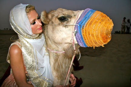 paris-and-camel.jpg